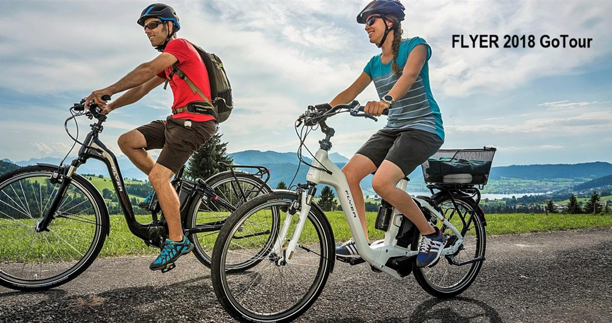 E-Bikes Neupotz - Fahrrad Bruckner: Elektroräder (Riese & Müller/ Centurion E-Fire...), Werkstatt, Zubehör, Service